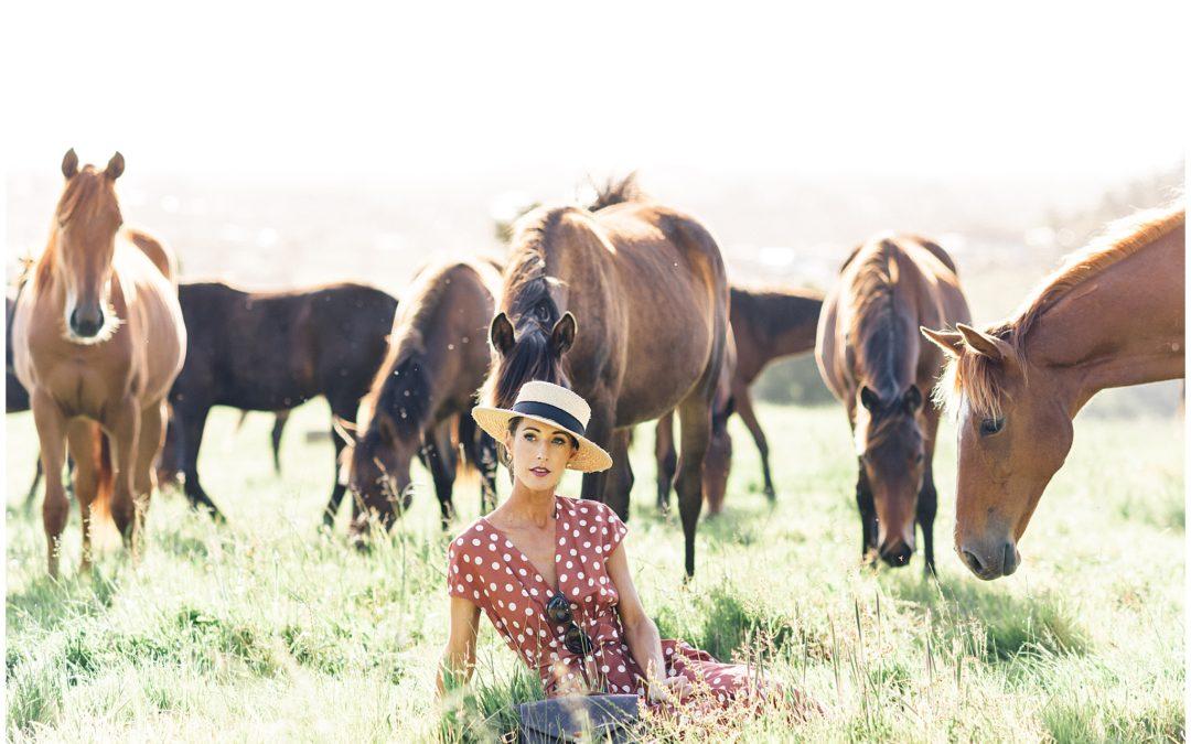 Wild horses| New Zealand Fashion photography